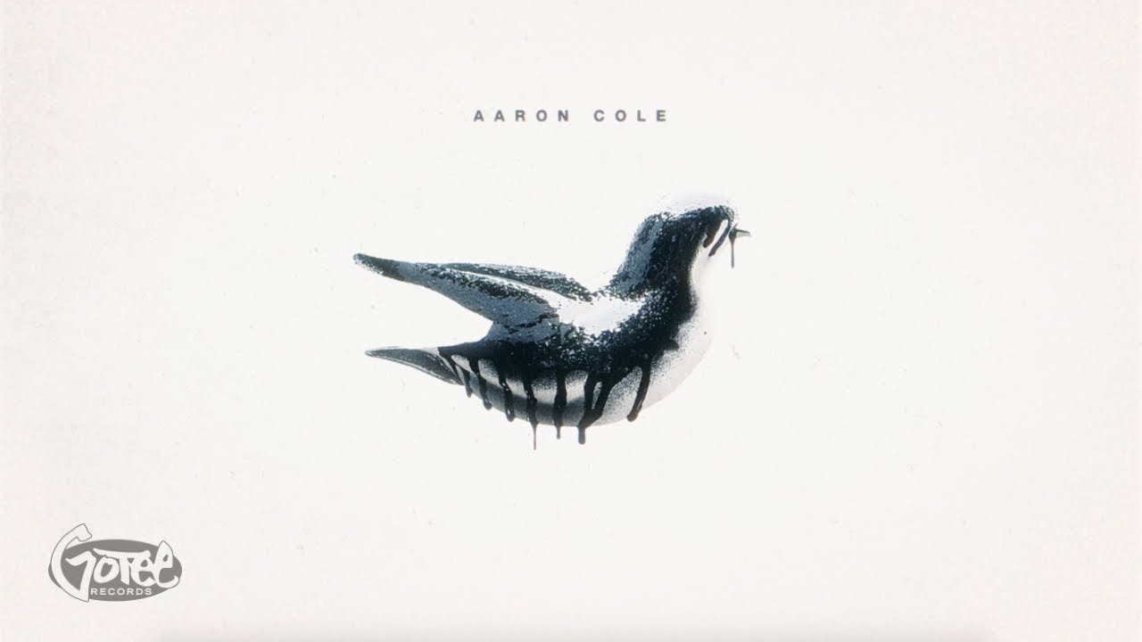 DOWNLOAD MP3: Aaron Cole - mad!