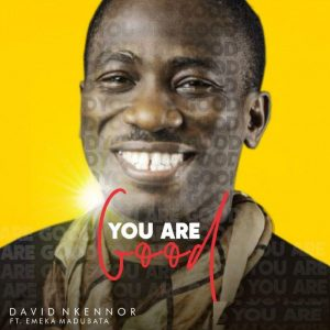 DOWNLOAD MP3: David Nkennor – You Are Good